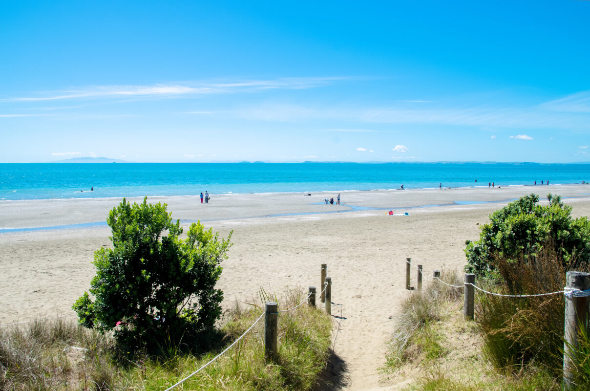 Long Bay Bay Beach in North Auckland