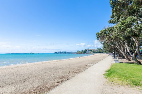 Mission Bay Beach in Auckland Central