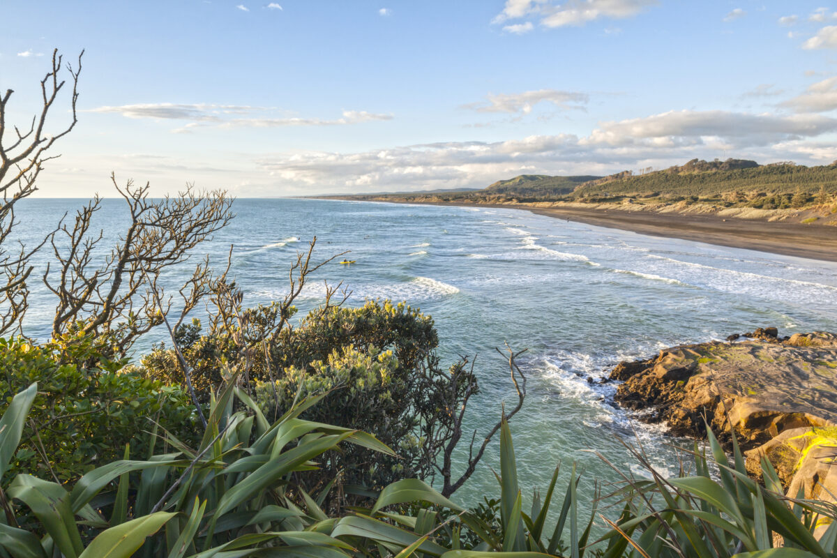 Muriwai Beach in West Auckland