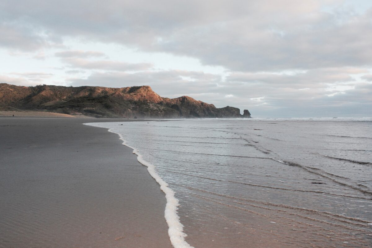 Bethells Beach in Auckland