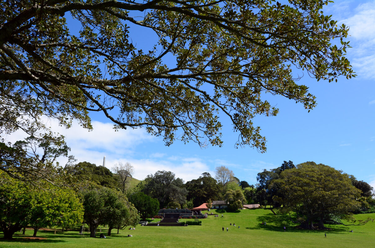 Cornwall park is a great free activity in Auckland